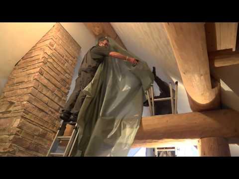 Wie man Holzwürmer effektiv bekämpft