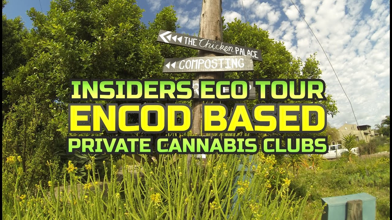Insiders Eco Tour - ENCOD Based Private Cannabis Clubs in South Africa