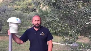 Elaisian On Tour : I Benedettini - Sant'Angelo a Fasanella (S1E5) ITA