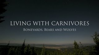 Living with Carnivores: Boneyards, Bears and Wolves