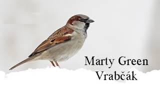 Marty Green - Vrabčák ( prod. DJ CROW ) Official Audio Video