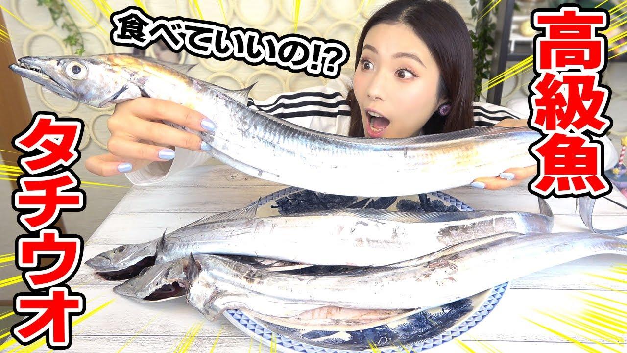 【大食い】高級魚タチウオ!釣りたてを炙って丼!あら汁!豪華料理作ってもらって食べた!【ますぶちさちよ】