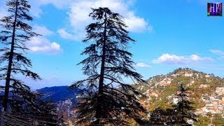 AMAZING SNOWY HILLS OF SHIMLA