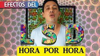 EFECTOS DEL LSD HORA POR HORA