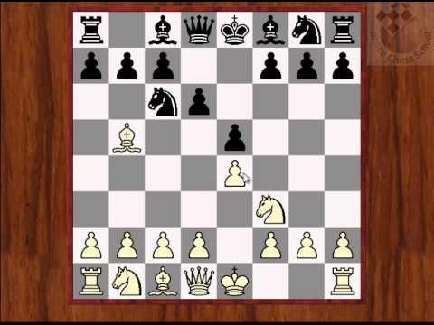 Преимущество первого хода и инициатива в шахматах
