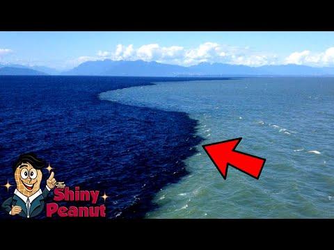 Dua Laut Tak Menyatu! 8 Fenomena Laut yang Luar Biasa
