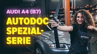 Wie AUDI A4 (8EC, B7) Bremstrommel auswechseln - Tutorial