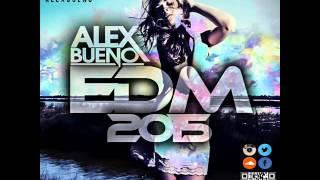 15.EDM 2015 - AlexBueno (www.alexbueno.hol.es)