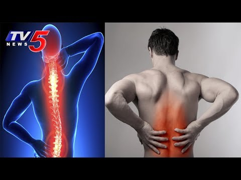 Back Pain Causes and Treatment | Vardhan Ayurvedic Hospital | Health File | TV5 News