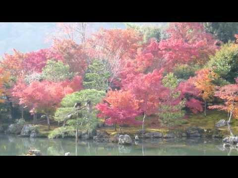 【京都・嵐山】2011 天龍寺の紅葉 Autumn leaves in Kyoto Arashiyama Tenryuji Temple