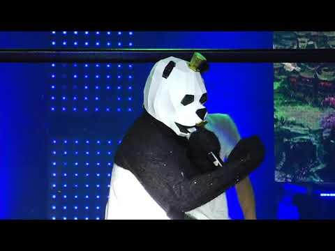 EXTRAIT PAZZAPA INCOGNITO PANDA
