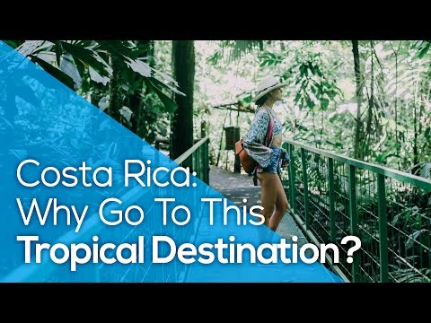 Costa Rica: Why Go To This Tropical Destination? / TRAVEL / ADVENTURE / SURF