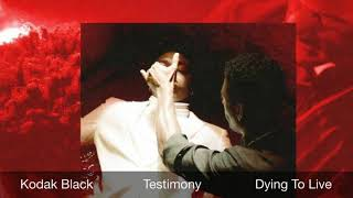 Kodak Black - Testimony (Instrumental) Prod By K Town