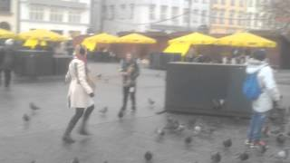 drunk woman chasing polish pigeons