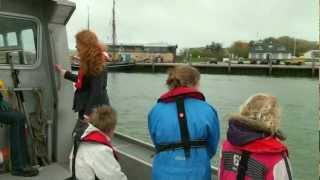Zeehonden bij Vlieland      1080p