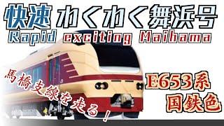 【11月13日限り!】快速わくわく舞浜号E653系国鉄色に乗ってきた!