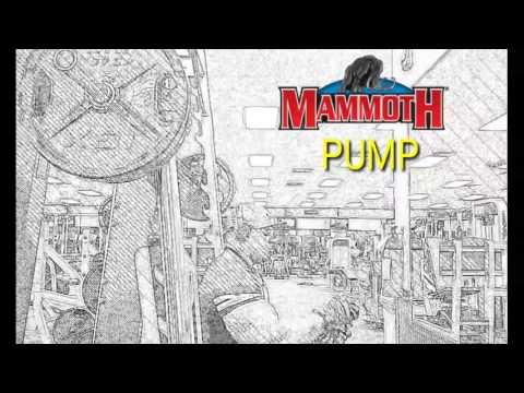 Mass Size Strength from Mammoth Pump #getmammoth #Teammammoth @interactive