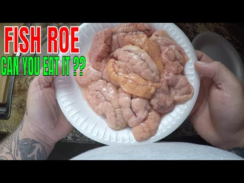 FISH ROE (SHEEPSHEAD) CATCH CLEAN AND COOK