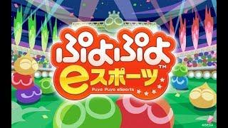【生放送】ぷよぷよeスポーツ 夜の練習 早めに終わります【switch】 thumbnail
