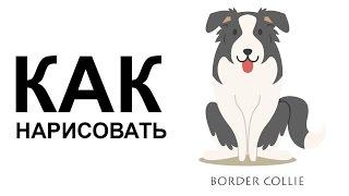 Рисунки собак. КАК НАРИСОВАТЬ СОБАКУ(Как нарисовать собаку поэтапно карандашом для начинающих за короткий промежуток времени. http://youtu.be/YcxzgLyRHd0..., 2015-06-25T06:49:30.000Z)