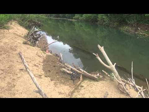 Tennessee Creek Fishing - The Southeast Experience