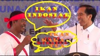 Video Ngakak Nelayan ini Bilang ikan indosiar saat sebut nama ikan oleh pak Jokowi download MP3, 3GP, MP4, WEBM, AVI, FLV Agustus 2018