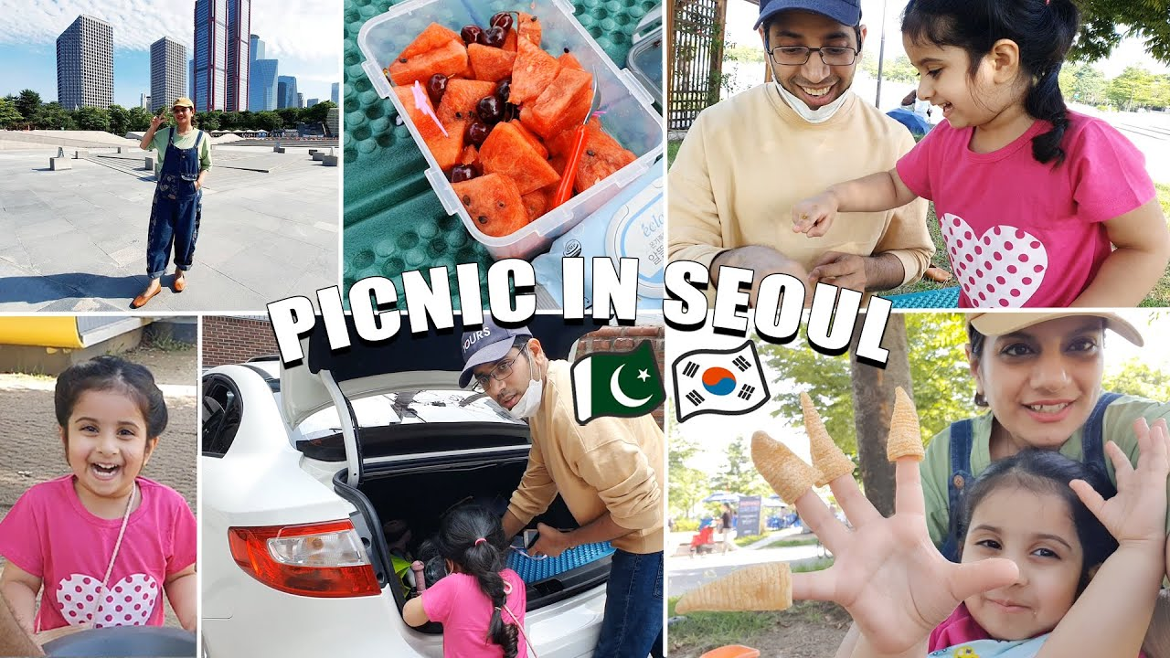 First Picnic After Buying Our Car 😍 Family life in Korea   Sidra Riaz VLOGS
