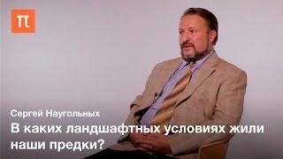 Древний ландшафт - Сергей Наугольных