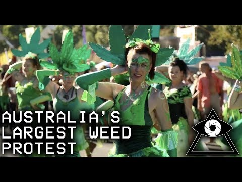 AUSTRALIA'S LARGEST WEED PROTEST | My Weed Doco (FULL FILM)