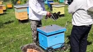 Как готовить дымарь для работы на пасеке