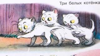 Три котенка. Детская сказка о приключениях трех маленьких котят.