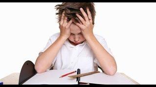 Top 10 Best Homework Excuses