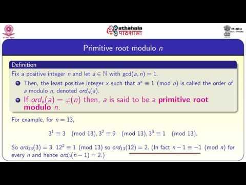 Primitive roots (MATH)
