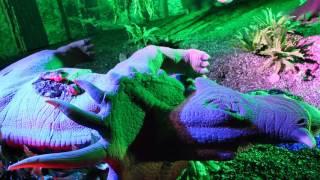 Динозавры в центральном детском мире