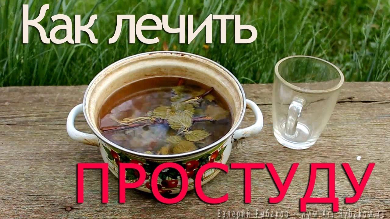 Лечимся от простуды чаем: секретный рецепт от шеф-повара Кулинарный сайт