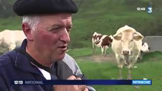 À la découverte des sonnailles en Béarn Pyrénées