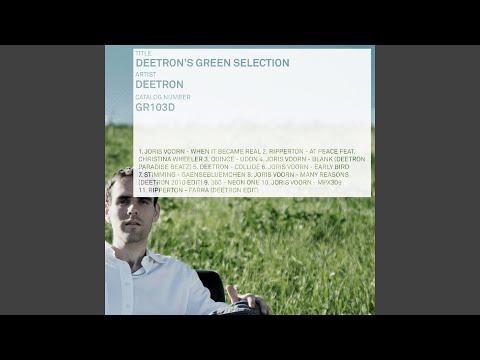 Many Reasons (Deetron 2010 Edit)