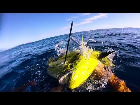Spearfishing Western Australia - A Week To Remember