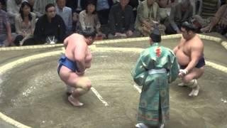 20150511 大相撲夏場所 琴将菊vs栃煌山.