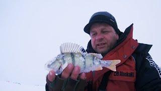 Рыбалка на самом большом озере в ЗАПАДНОЙ СИБИРИ День 1 удачная разведка