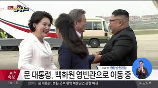 문 대통령-김 위원장, 다른 차량으로 이동   김진의 돌직구쇼 thumbnail