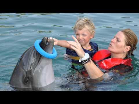 Delfinterápia