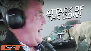 The Grand Tour: Attack Cow