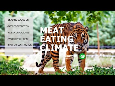 Meat Eating Climate: THE USDA CAVES TO THE MEAT INDUSTRY