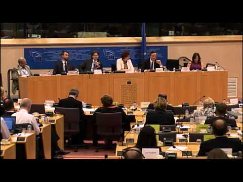 Gay Mitchell questions Mario Draghi in the European Parliament