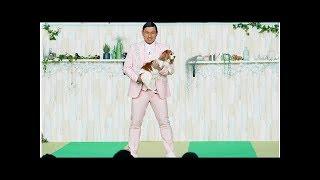オードリー春日、スゴ技犬と挑んだ4か月の「ドッグダンス」の成果を披露.