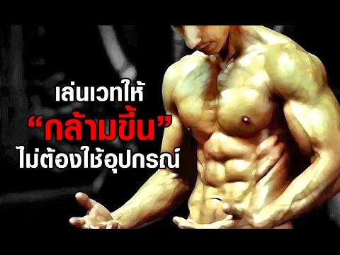 Body Weight Training : เล่นเวทให้กล้ามขึ้นไม่ต้องใช้อุปกรณ์