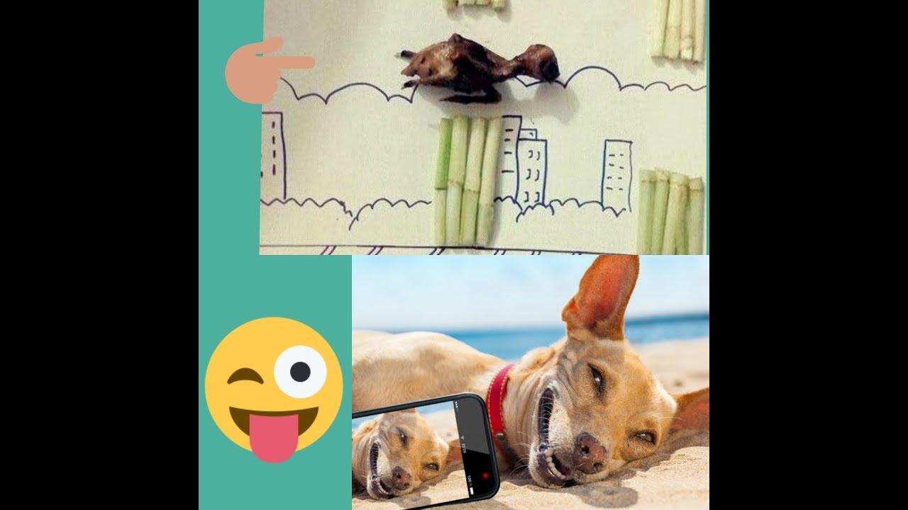 Những hình ảnh hài hước có 1 - 0 - 2 . Cười chảy cả nước mắt