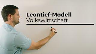 Leontief-Modell (Güterströme einer Volkswirtschaft), Berufskolleg, Wirtschaft, Verwaltung