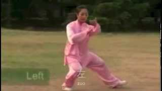TaiChi24-English and Chinese subtitles